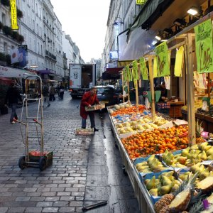 French Growth Picking Up