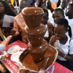 Ivory Coast Produces Record Cocoa