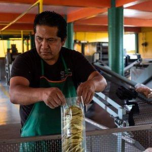 Mexico Economy Slips in Q2