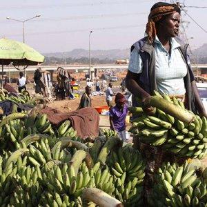 Uganda Inflation Drops, Kenya Up
