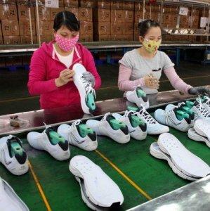 Vietnam  GDP Grows