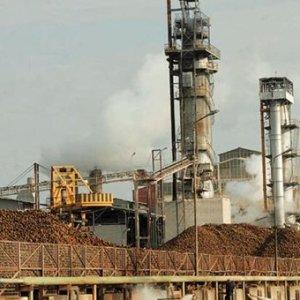 Greek Factory Activity at Nine-Year Peak