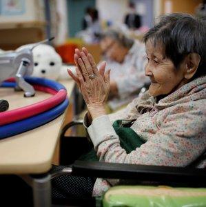 Japan the Land of Rising Robots