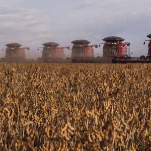 If a US-China trade war develops, it could reduce Brazil's 2019 GDP by 1.1%. Picture shows harvesting soybeans in Brazil.
