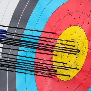 Iran Teenager Wins Bronze at Argentine Archery Event