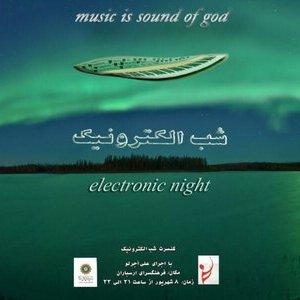 Electronic Night