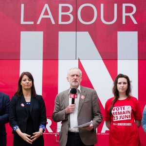Labour Conditions Vote for EU Withdrawal