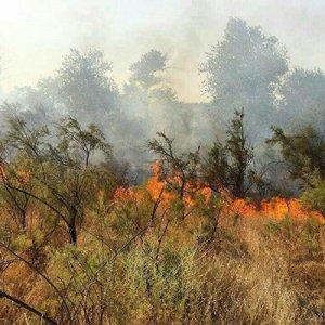 Fire in Miankaleh
