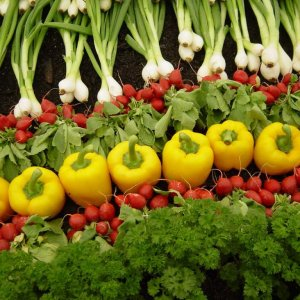 Agreement to Promote Belarusian Agro Products in Iran