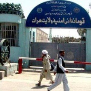 Drug Smuggling to Iran Prevented in Herat