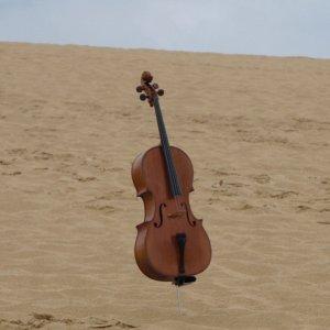 Music & Desert Silence