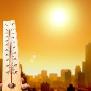 Average Spring Temperature Up 1.5°C