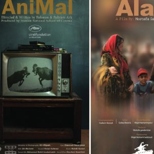 Posters of some participating films