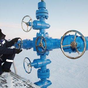 Gazprom, Rosneft New Licenses on Arctic Shelf