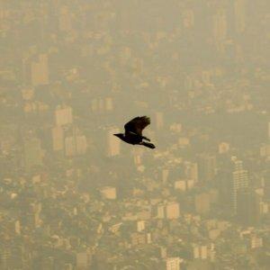 Air Pollution Closes Kahrizak, Rey Schools