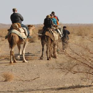 Maranjab Camel Rally