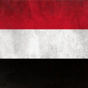 Yemeni Delegation Arrives