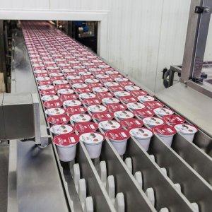 Yogurt Powder, an Innovative Dairy Product