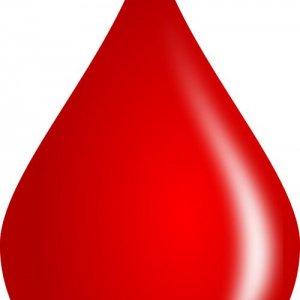 Int'l Blood Congress