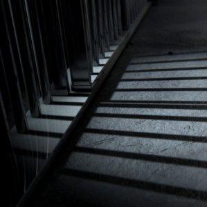 Economic Burden of Prisoners Significant