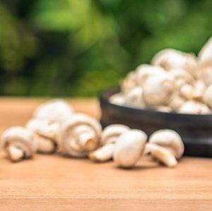 Mushroom Exports Earned $8.8m Last Year