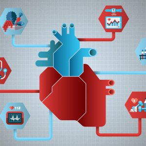 Almost 50% of CVD cases can be prevented through healthy lifestyles, timely checkups, and exercise.