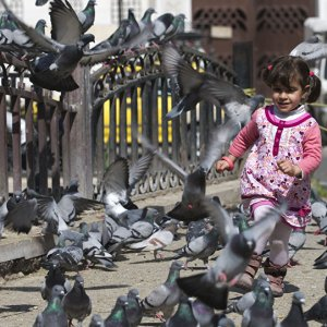 Marjeh Square, Damascus, on Feb. 27 during one of the previous ceasefires (File Photo)
