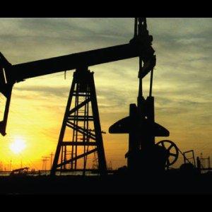 Petroleum Consumption Reaches 60b Liters in 9 Months