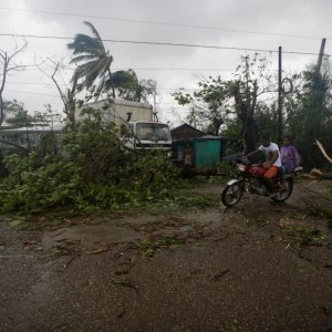 People riding on a motorcycle move between fallen  trees after Hurricane Matthew passed through Les Cayes, Haiti, on Oct. 4.