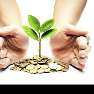 Foreign Investors Favor Green Projects