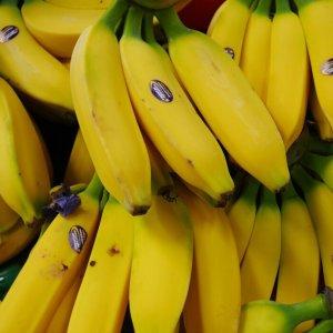 Banana Prices Rise
