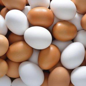 The Cracks in Egg Industry