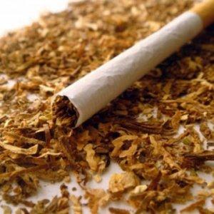 Majlis Warned Against Raising Cigarette Prices