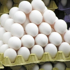 Egg Exports to Reach 90,000 Tons