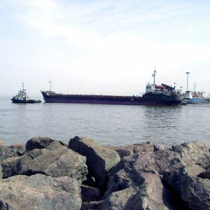 Anzali Free Zone Exports on the Rise