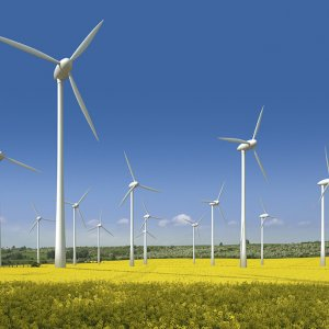 Danish Firm to Help Develop Wind Projects