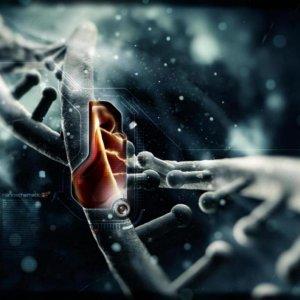 StatNano Sets Up Nanotech Products Database