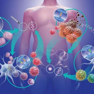 Cancer Discovery Holds Promise