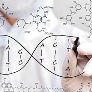 Genetic Database Set Up