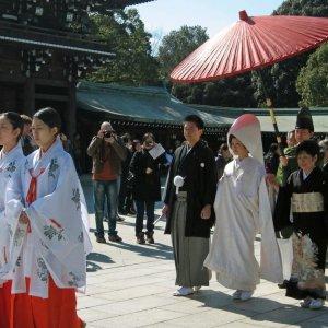 Japan Revises Remarriage Law