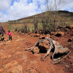 Madagascar Drought Worsens