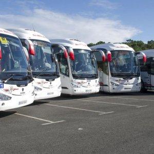Tour Buses Take Backseat