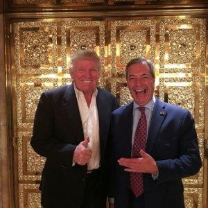Trump Backs Farage as British Ambassador to US