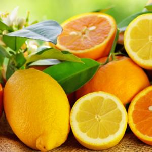 Mazandaran Citrus Fruit Production