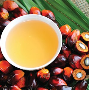 The use of palm oil in the commercial food industry is widespread because it is cheap.