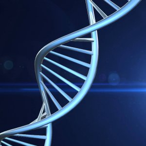 Genetic Type Important in Treating Cancer