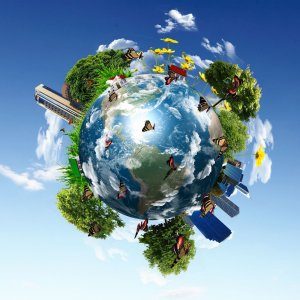Earth's Resources Used Up at Quickest Rate