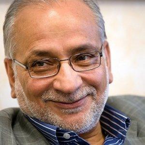 Pro-Gov't Politician Forecasts Bipartisan Majlis