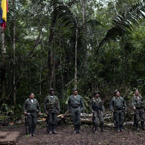 Colombia Farc Leaders Could  Disown Rogue Unit