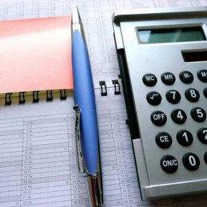 Parliament to Probe Government Paychecks